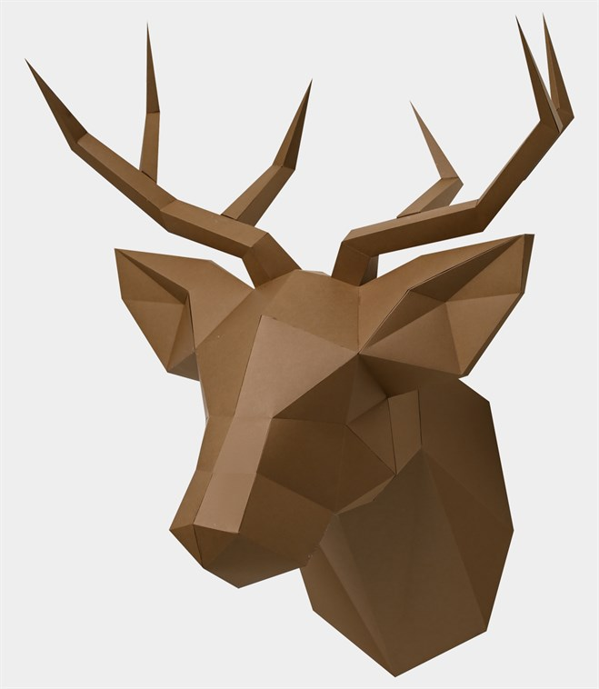 paper deer head Form the deer head by scraping a plastic foam egg shape at one end to make the nose cut ear shapes from thin cardboard fold one end of the ear to make a tab tape the ears to the head with masking tape, wrapping around the head.